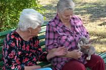 Obyvatelům kadaňského domova pro seniory se splnilo jedno společné přání.