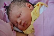 Josef Zemanec se narodil 15. října ve 13:55 v kadaňské nemocnici mamince Evě Šafránkové z Chomutova. Malý vážil 3570 gramů a měřil 51 centimetrů. Jeho fotografii nám zaslala rodina.