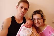 Diana Aulíková se narodila 11. listopadu 2017 ve 2.07 hodin rodičům Vanese Farbárové a Václavu Aulíkovi z Chomutova. Měřila 49 cm a vážila 3,65 kg.