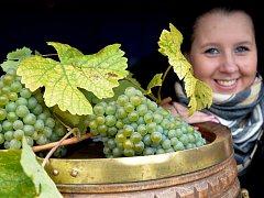 Vinobraní ve Stranné.