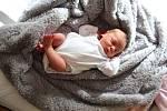 Dominika Šulcová se narodila mamince Olze Šulcové a tatínkovi Miroslavovi Šulcovi z Chomutova 26.2.2019 v 19:43 hodin. Měřila 45 cm a vážila 2,65 kg.