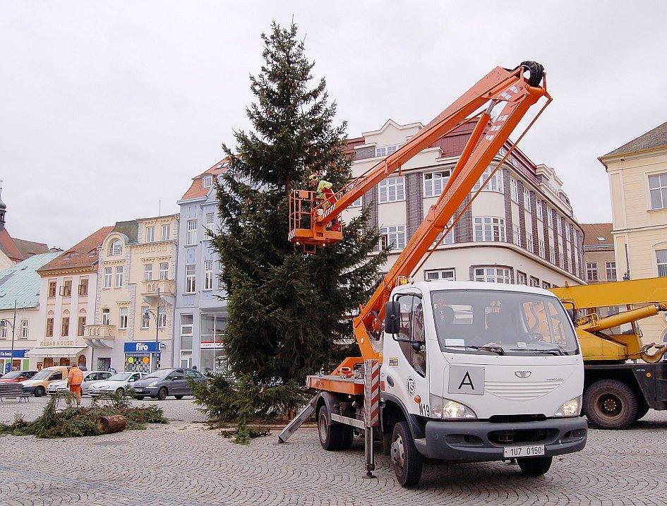 V pátek odpoledne vztyčili pracovníci technických služeb na chomutovském náměstí vánoční strom.