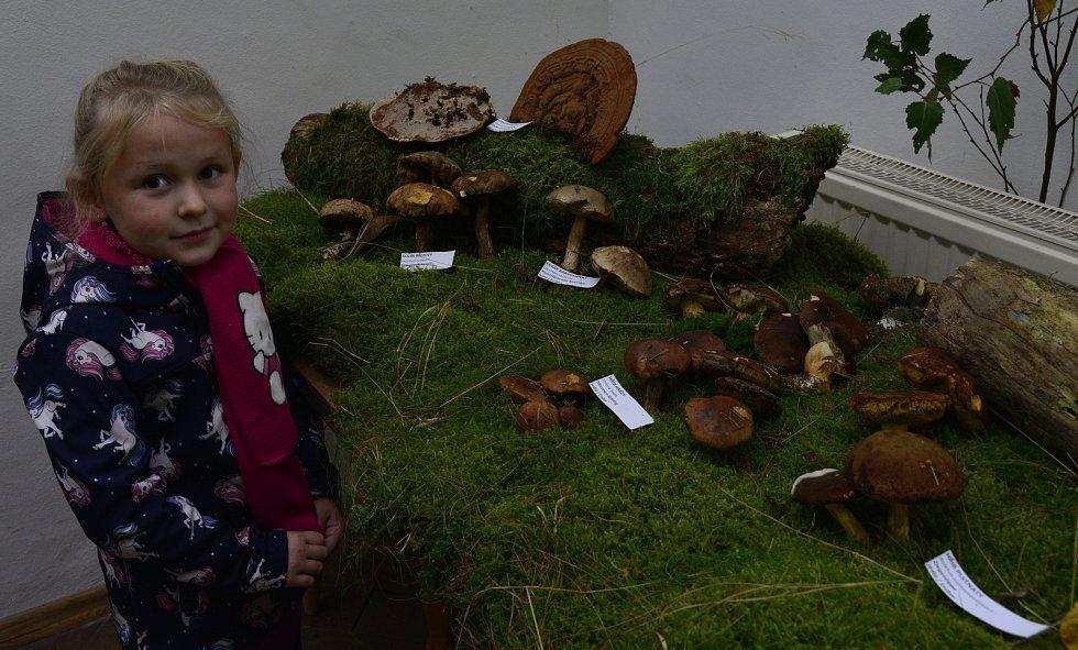 V Kalku v Krušných horách si dali dostaveníčko příznivci houbaření. Po přednášce o houbách a léčitelství si mohli návštěvníci pochutnat na houbovém guláši, tlačence a dalších chuťovkách z hub. Proběhla i výstava a soutěž o ceny.