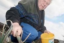 LETOS NAPOSLEDY. Po mnoha letech musí opusti pronajaté pozemky zahrádkaři od Kamencového jezera, často je to smutné loučení. Na snímku jeden ze zahrádkářů Jaroslav Gregor.