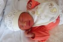 Holčička Le Ngoc Chau Anh se narodila 26. prosince v pravé poledne rodičům Vu Thu Huong a Le Hong Truong z Chomutova. Vážila 3,2 kg a měřila 51 cm.