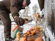 I na Štědrý den vyrazili myslivci přikrmovat zvěř.