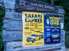 Safari expres jezdil v zooparku i vloni.