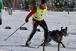 Pravé zimní počasí přilákalo do Lesné v Krušných horách spoustu závodníků a příznivců psích spřežení.
