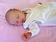Nela Mišunová se narodila 3. května 2018 ve 20.09 hodin rodičům Heleně Lévaiové a Ondřejovi Mišunovi z Kadaně. Vážila 2,35 hodin a měřila 48 cm.