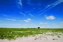 Krajina v údolích Central Kalahari je typická. Tráva jen občas rušená akcáciovým hájem. Mezi údolími je hustý buš.