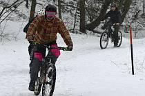 Lov ryb, běžkování, jízda na kole. Tak lidé v Jirkově a Chomutově trávili víkend.