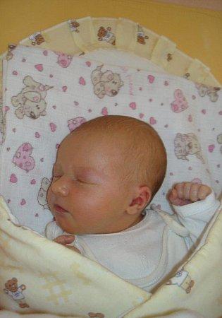 Krásná Leontýnka Přenosilová se 2.února 2013v0.40hodin narodila šťastným rodičům Vendule a Václavovi Přenosilovým. Tehdy ještě měřila 51centimetrů a vážila 3,1kilogramu. Doma na ní čekala sestřička Madlenka.