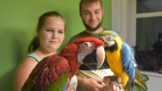 Radka Fejfarová se věnuje chovu exotických papoušků s přítelem Janem Havránkem.