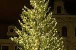 Vánoční strom v Chomutově