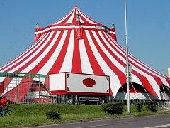 Berousek original cirkus Sultán