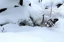 Zasněžené Helenčiny vodopády lákají k zimní procházce.