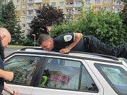 Strážníci vysvobodili psa ze zamčeného auta.