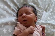 Jasmína Rézová se narodila mamince Anetě Titllové a tatínkovi Davidovi Rézovi z Chomutova 29.7.2019 v 10:26 hodin. Měřila 52 cm a vážila 2,9 kg.