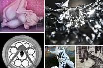 Třináct umělců představí svou nejnovější tvorbu na výstavě v Chomutově i v Litvínově.