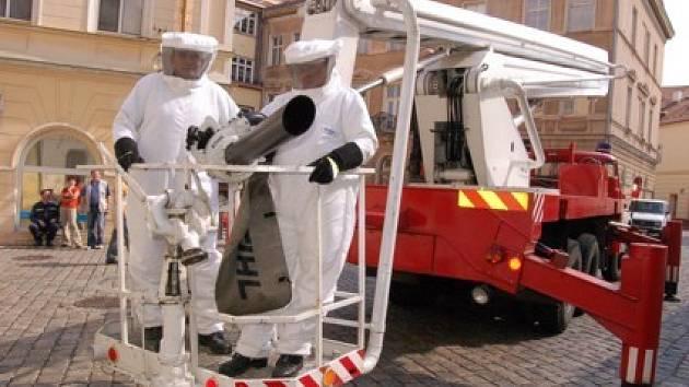 Pracovníci ve speciálním oděvu během sundavání včelího hnízda.