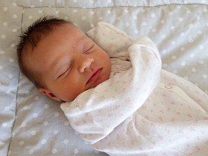 Nina Purkrábková se narodila 10. května 2018 ve 23.44 hodin rodičům Veronice Purkrábek Marešové a Janu Purkrábkovi ze Spořic. Měřila 50 cm a vážila 2,95 kg.