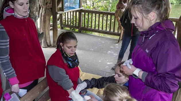 Mladí záchranáři soutěžili v zooparku.