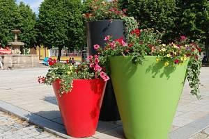 Jako ve Francii: Jirkov prozářily květiny.