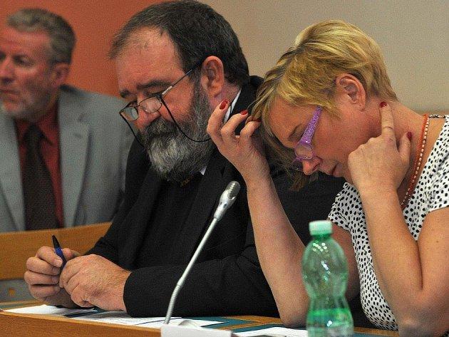 RADNÍ JAN HARTMAN (na snímku) je předsedou nové IT komise. Do konce srpna má navrhnou její členy.