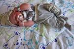 Matyáš Bouma se poprvé rozkřičel dne 14.4.2016 v 10:15 hodin v chomutovské porodnici. Z malého Maytáška s váhou 3,35 kg a výškou 49 cm má největší radost maminka Lucie Řehořová, tatínek František Bouma a osmiletá sestřička Kristýna Pilařová z Chomutova.