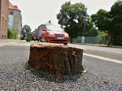 V řadě lip v chomutovské Rokycanově ulici zůstalo pět pařezů zalitých v asfaltu.