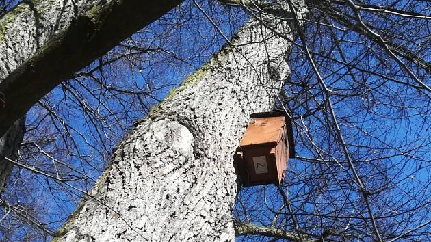 V zámeckém parku v Klášterci nad Ohří provedli kontrolu ptačích budek.