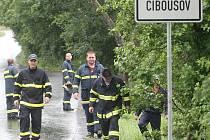 V nejbližších dnech po ženině zmizení po ní pátraly desítky policistů, hasičů a dobrovolníků. Bezvýsledně. Byla nalezena čtyři kilometry od Klášterce.