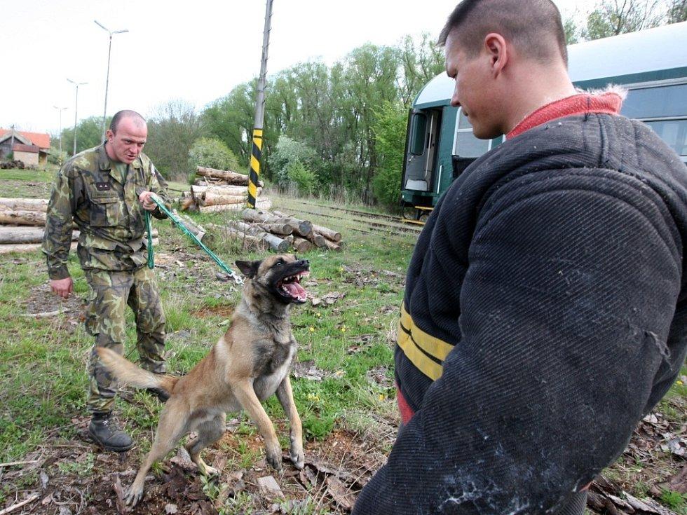 Na snímku figurant Jiří Kletečka a armádní psovod Tomáš Procházka se psem Pedrem.