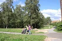 Lesík na Písečné je prošpikovaný vyšlapanými cestičkami, kam chodí pejskaři a prohánějí se děti na kolech. Brzy by se měl změnit v přírodní fitness centrum.