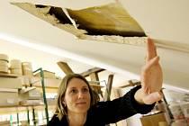 Pracovnice kadaňské knihovny Jana Vlasáková si prohlíží jednu sondu krovu střechy, která má odhalit problémy se zatékáním do objektu.