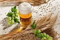 Turisté se mohou opět vydat na Krušnohorskou pivní stezku.