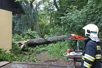 Vzrostlý dub nevydržel a skácel se na prodejnu.