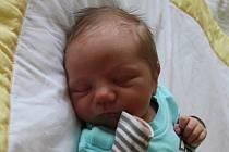Filip Kováč se narodil mamince Petře Menzlové a tatínkovi Renému Kováčovi z Mostu 20.8.2019 ve 3:25 hodin. Měřil 52 cm a vážil 3,3 kg. Životem jej budou provázet sourozenci Nikol (7 let) a René (24 let).