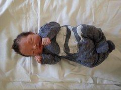 Daniel Nguyen se narodil mamince Adéle Lodňanové 22.2.2017 v 8:58 hodin. Tehdy malý Danek vážil 3,55 kg a měřil 52 cm. Domů si ho z chomutovské porodnice nepoveze tatínek Cuong Manh Nguyen daleko. Bydlí totiž v Jirkově.