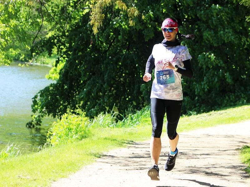 Čtyři stovky běžců a chodců se vydaly do první etapy Ohřecké osmičky. Běžecký seriál, který přiblíží přírodní krásy a památky Dolního Poohří, odstartoval v Klášterci nad Ohří.