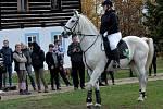 Kolem šedesáti koní a jezdců si dali dostaveníčko na Farmě v zooparku v Chomutově.