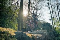 Ilustrační foto: cyklostezka