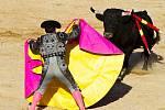 Sám matador pak býka nejprve jaksi oťukává těžkou růžovo-žlutou látkou zvanou capote.