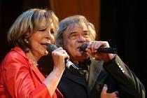 Hana Zagorová a Petr Rezek na koncertě, rok 2010