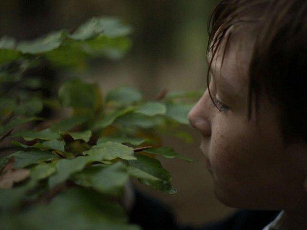 Z videa Marka Thera, finalisty Chalupeckého ceny, nazvaného Pflaumen