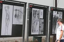 Výstava v plzeňských Křižíkových sadech přibližuje na velkoplošných panelech dosavadní historii Mezinárodního bienále kresby v Plzni od jeho založení v roce 1996.