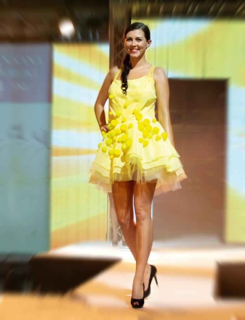 Vitezny model Miry Vesele (1.místo_2013)